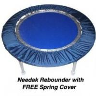 needakblueFreeSpringCvr300x300.jpg